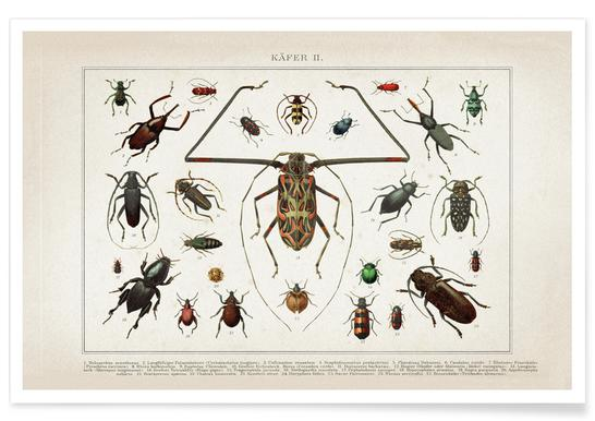 Käfer 2 - Brockhaus Poster