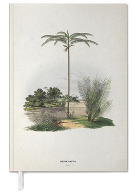 Oenocarpus Bataua - Martius Personal Planner