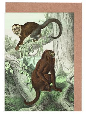 Affen 3 - Schubert -Grußkarten-Set