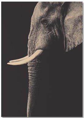 Vintage Elephant -Notizblock
