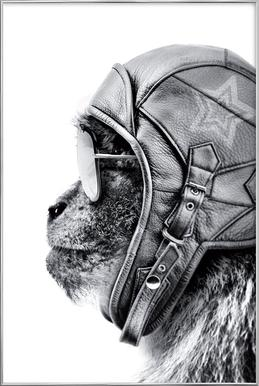 Aviator Monkey poster in aluminium lijst