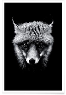 Dark Fox affiche