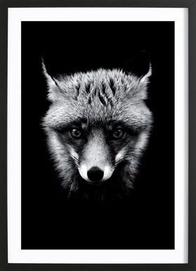 Dark Fox affiche sous cadre en bois
