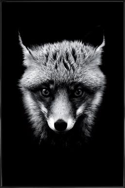Dark Fox affiche encadrée