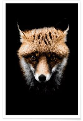 Fox affiche