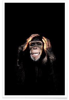 Monkey Hear No Evil