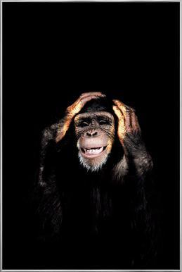 Monkey Hear No Evil affiche sous cadre en aluminium