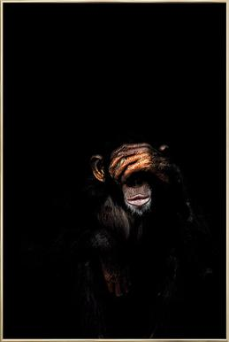 Monkey See No Evil poster in aluminium lijst
