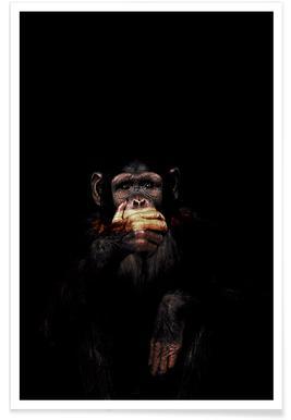 Monkey Speak No Evil affiche