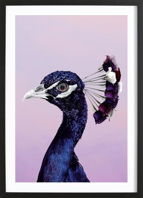 Purplish Peacock affiche sous cadre en bois