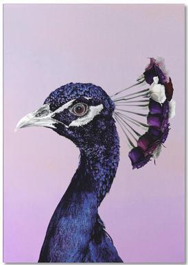 Purplish Peacock bloc-notes