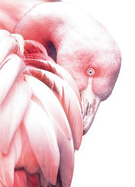White Flamingo toile