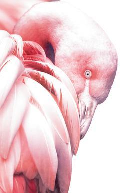 White Flamingo tableau en verre
