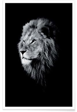 Dark Lion Head poster