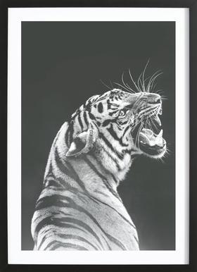 Grey Tiger Poster i träram