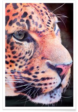 Leopard Close-Up Poster