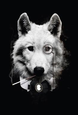 Classy Wolf alu dibond