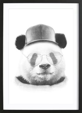 Cool Panda ingelijste print