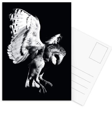 Barn Owl ansichtkaartenset