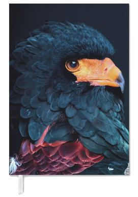 Bateleur Eagle agenda