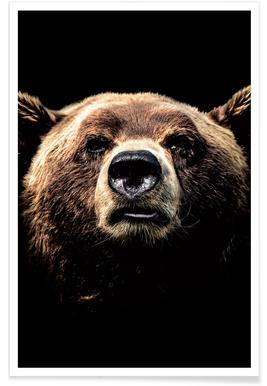 Dark Bear Poster