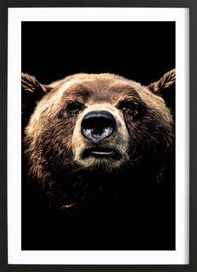 Dark Bear ingelijste print