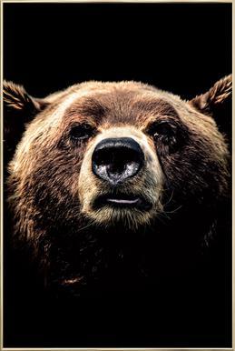 Dark Bear poster in aluminium lijst