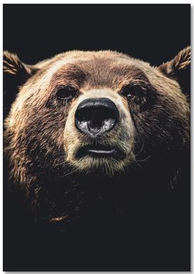 Dark Bear notitieboekje