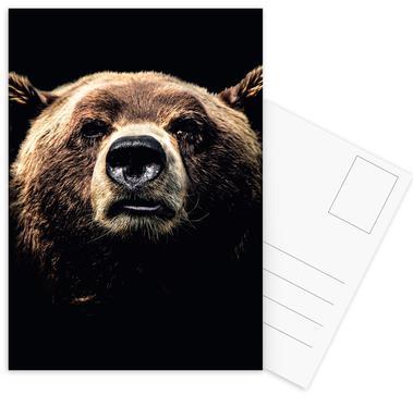 Dark Bear ansichtkaartenset