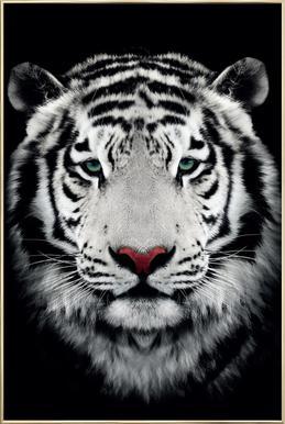 Dark Bengal Tiger poster in aluminium lijst