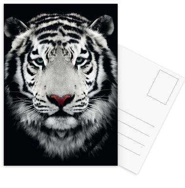 Dark Bengal Tiger ansichtkaartenset