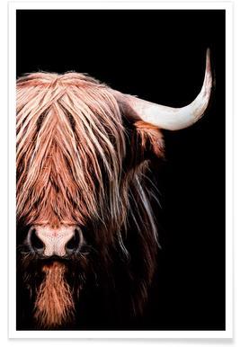 Dark Highlander 2 poster
