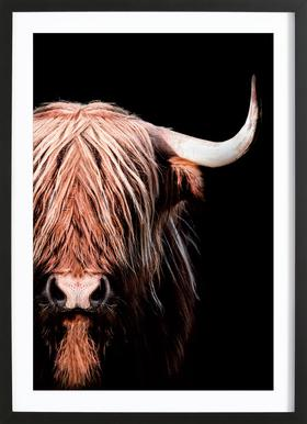 Dark Highlander 2 Framed Print