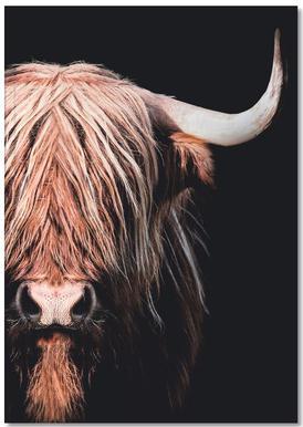 Dark Highlander 2 notitieboekje