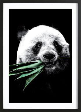Dark Panda Framed Print