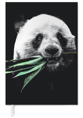Dark Panda agenda