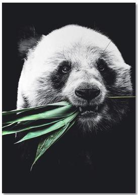 Dark Panda notitieblok