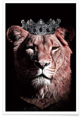 Dark Queen poster