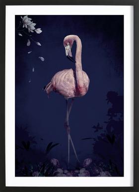 Flamingo ingelijste print