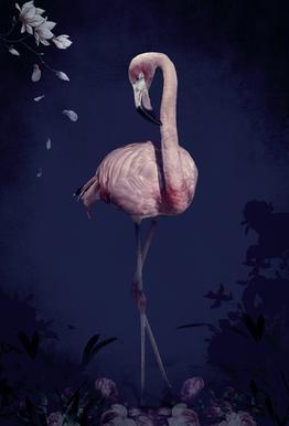 Flamingo acrylglas print