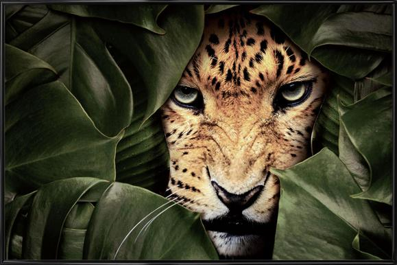 Jungle Leopard Framed Poster