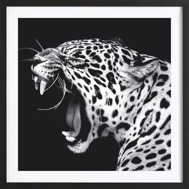 Roaring Jaguar Framed Print