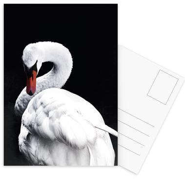White Swan Postcard Set