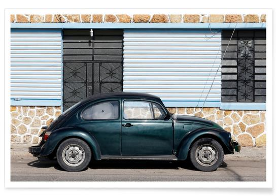 Mexican Beetle 10 poster