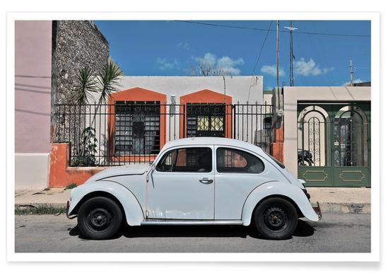 Mexican Beetle 23 poster