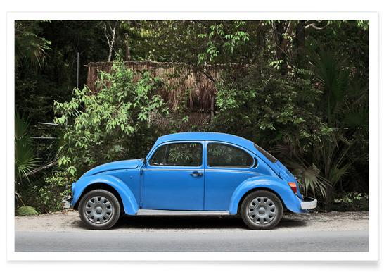 Mexican Beetle 28 affiche