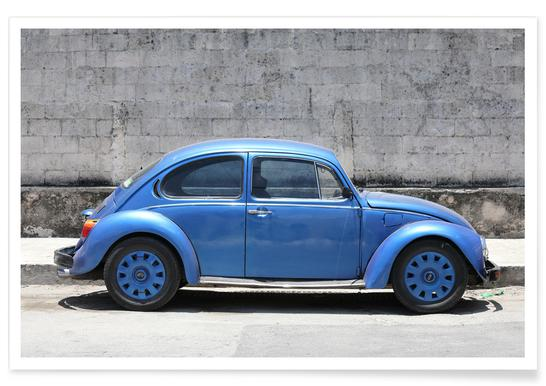 Mexican Beetle 6 affiche