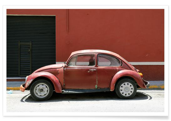 Mexican Beetle 7 affiche