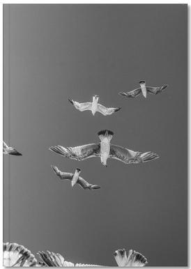 Soaring Birds Notebook