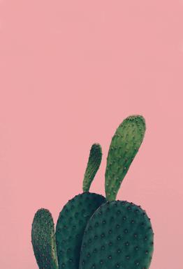 Green Friend by @yiiin